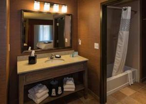 Ein Badezimmer in der Unterkunft Hampton Inn & Suites Springdale/Zion National Park