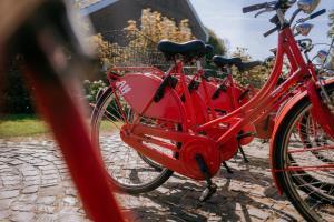 Radfahren an der Unterkunft Vier Häuser oder in der Nähe