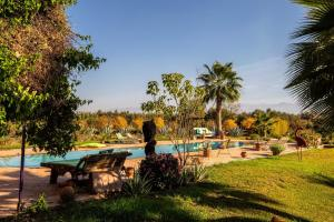 The swimming pool at or near Le Clos Beldi
