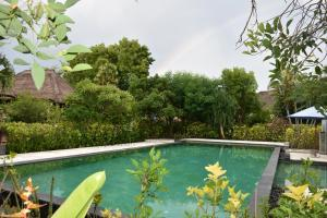 The swimming pool at or near Sunia Loka Bungalows & Dive Center