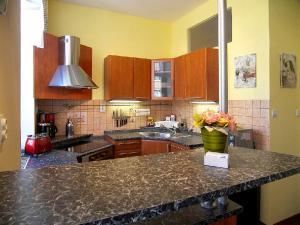 Kuchyň nebo kuchyňský kout v ubytování Homely Apartments Villa Christiana
