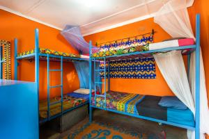 A bunk bed or bunk beds in a room at Victoria Falls Backpackers Zambia