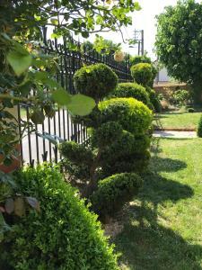 A garden outside La Villa Eustache