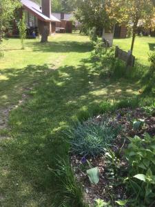 Ein Garten an der Unterkunft Ferienhaus Gartow