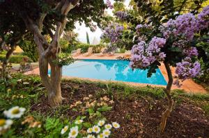 The swimming pool at or close to Quinta das Vinhas