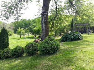 A garden outside Domaine de la Piale