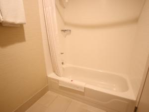 A bathroom at Comfort Inn & Suites North Dallas-Addison