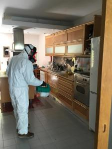 A kitchen or kitchenette at Figuras House Luxury Villa