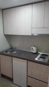 Kuchyň nebo kuchyňský kout v ubytování Apartments Matić