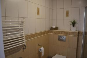 A bathroom at Apartament Szaława