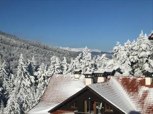 Borovets Hills Apartments - Evergreen Suite during the winter