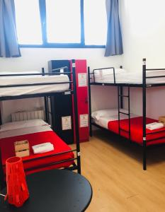 Litera o literas de una habitación en Bilbao Akelarre Hostel