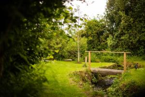 A garden outside Corcreggan Mill Lodge