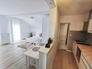 A kitchen or kitchenette at Apartments Bassanese