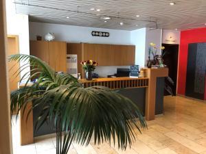 Lobby/Rezeption in der Unterkunft Zys Hotel