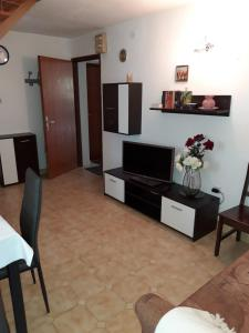 A television and/or entertainment center at Apartments Marija