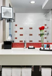 A bathroom at Crowne Plaza JFK Airport New York City, an IHG hotel