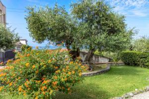 Giardino di B&B Villa degli Ulivi