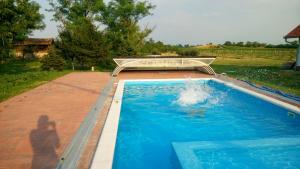 The swimming pool at or near Bartha portak