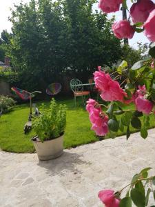 Ein Garten an der Unterkunft La Maison du Carroir