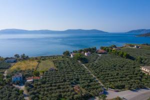 Άποψη από ψηλά του Makis Inn Resort