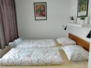 Ein Bett oder Betten in einem Zimmer der Unterkunft DUINZICHT 8 Bed by the Sea