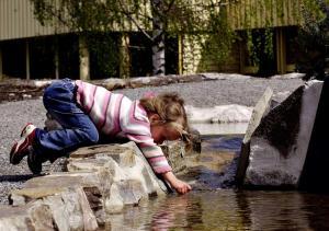 Barn på Pan Garden Åmli Hotel