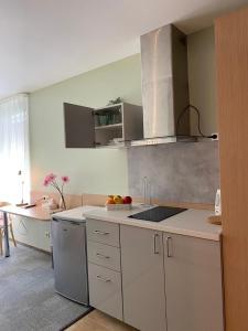 Кухня или мини-кухня в Dzintars Hotel