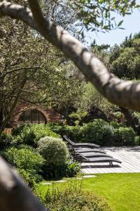 A garden outside Domaine Les Mésanges