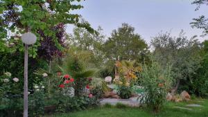 Jardín al aire libre en La Placeta Guesthouse