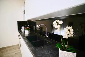 A kitchen or kitchenette at Apartments Villa Aquamarie