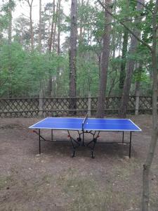 Tischtennis in der Unterkunft Nepumuk-Ranch oder in der Nähe