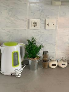 Coffee and tea making facilities at Apartments Ema