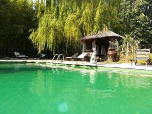 The swimming pool at or near Le Mas de la Chouette