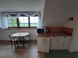 Küche/Küchenzeile in der Unterkunft Penzion Chlumec
