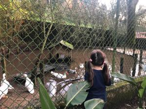 Children staying at Quinta Vale do Cruz