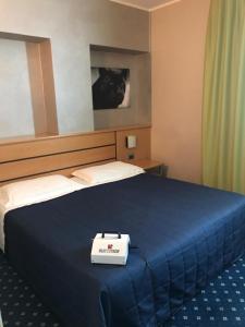 Letto o letti in una camera di Garda Hotel