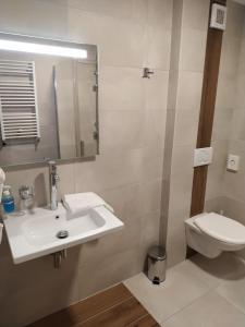 Koupelna v ubytování Hotel Anna Nejdek