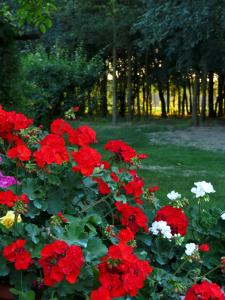 Сад в Agriturismo La Possioncella