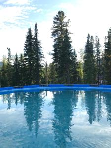 The swimming pool at or near Chalet Lesnie Doliny