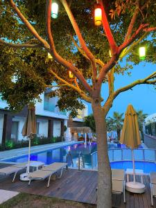 The swimming pool at or near Zest Exclusive Hotel