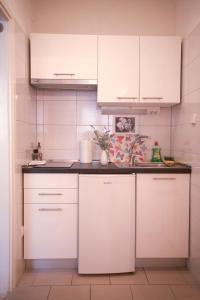 Kuchyň nebo kuchyňský kout v ubytování House Bilic