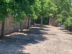 A garden outside Casa Da Charca