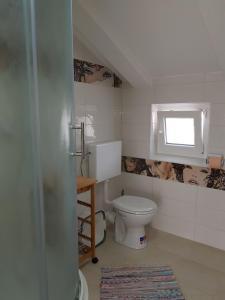 A bathroom at Apartments and Rooms Vesna Novalja