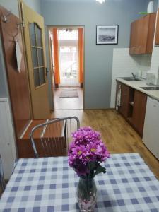 Kuchnia lub aneks kuchenny w obiekcie Apartament Rowy
