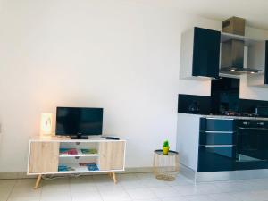 A television and/or entertainment centre at Appartement Sous le Soleil