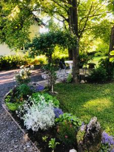 Zahrada ubytování Apartments Smirnov