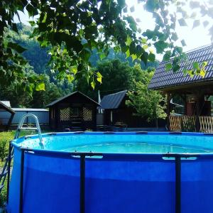 "The swimming pool at or near Усадьба ""Рыжий пёс"""