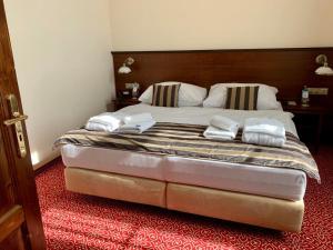 Posteľ alebo postele v izbe v ubytovaní Hotel Bankov Košice