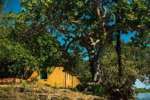 A garden outside Anaconda Amazon Resort